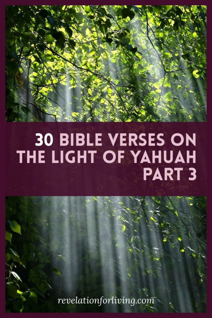 Bible Verses on the Light of Yahuah Psalm 36:9 Psalm 43:3